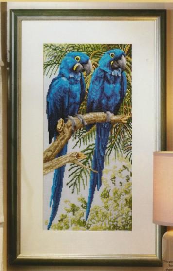 """Статья  """"Вышивка Крестом Птицы """" содержит схему вышивки крестом чудных птиц - попугаев Ара.  Схема хорошего качества."""