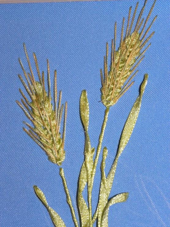 Колоски пшеницы вышивка
