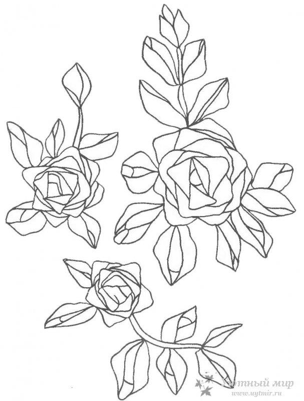Вышивка атласными лентами розы схемы