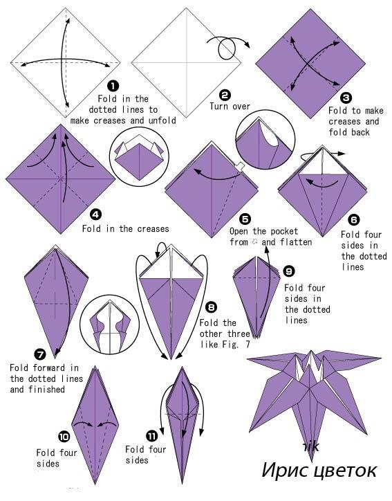 Оригами ирис из бумаги: схема