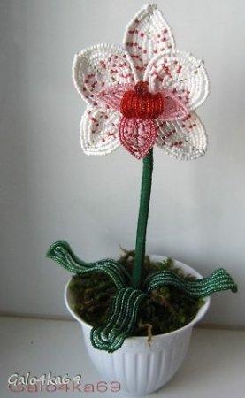 плетение из бисера орхидея схемы пошаговые
