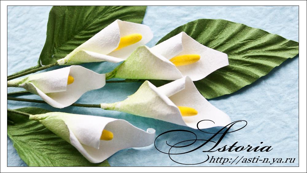Бумажные цветы своими руками мастер класс фото
