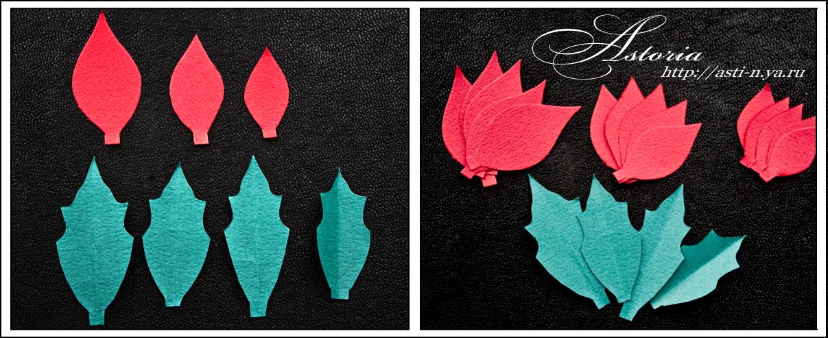 Роджественский цветок в рисунках