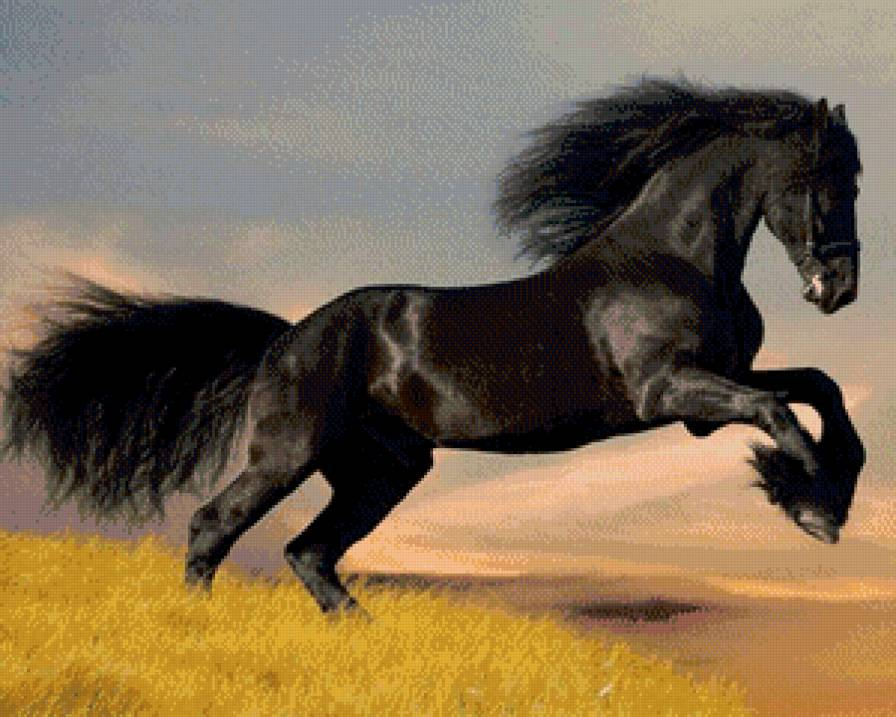 Вышивка крестом схема лошади скачать бесплатно