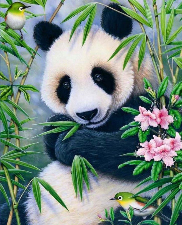 Картинки панды кунг фу