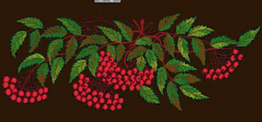 Схема вышивки крестом розы на черной канве скачать бесплатно