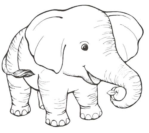 Раскраски для слона рисунок