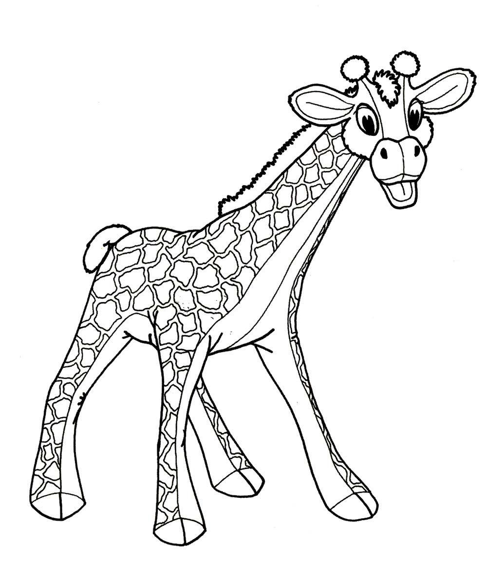 """Раскраски """"картинка - рисунок жираф для детей малышей ..."""