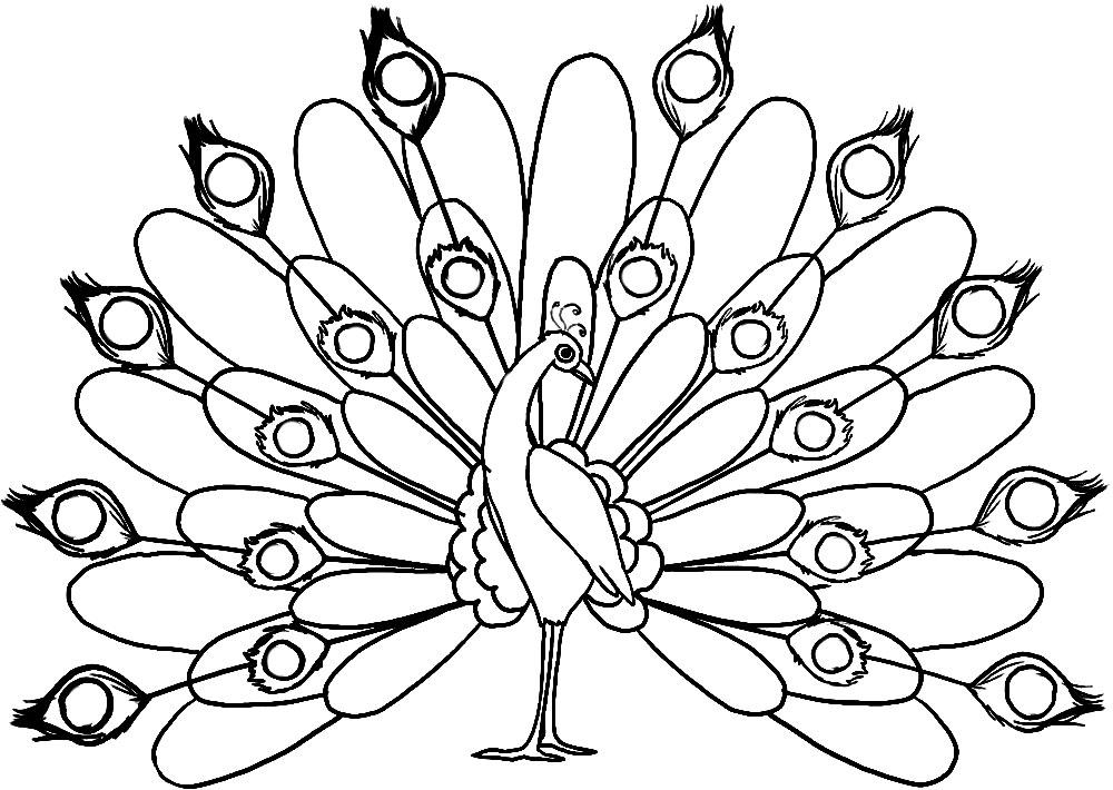 Жар птица раскраски