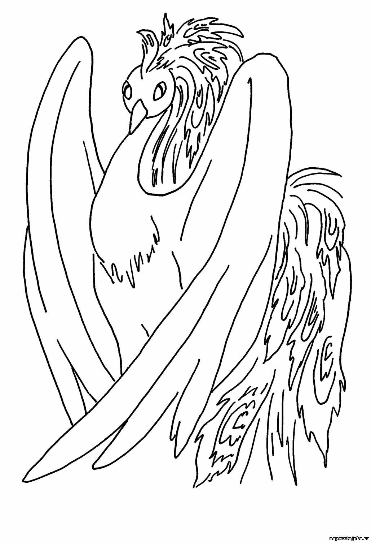 """Раскраски """"жар птица"""" скачать и распечатать бесплатно"""