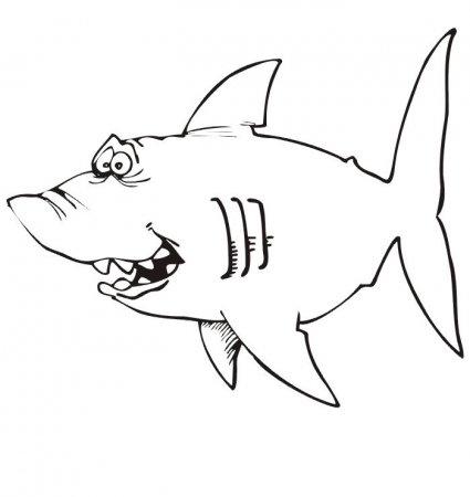 Акула картинка раскраска