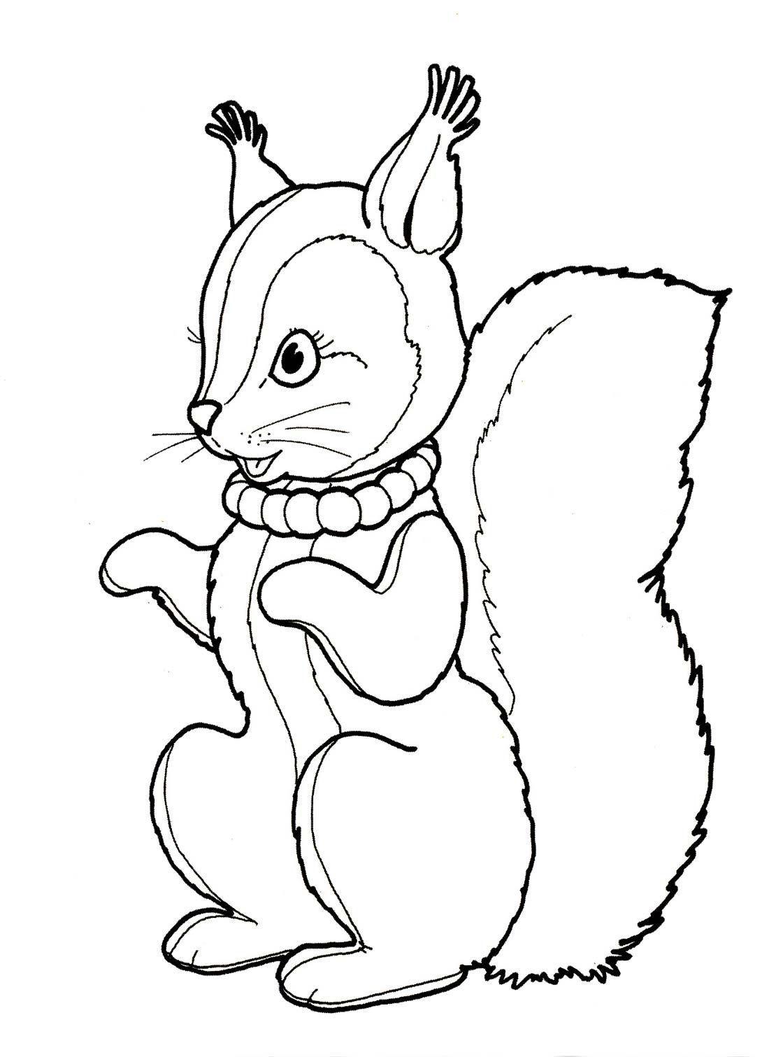 Раскраска белочка зайчик 155