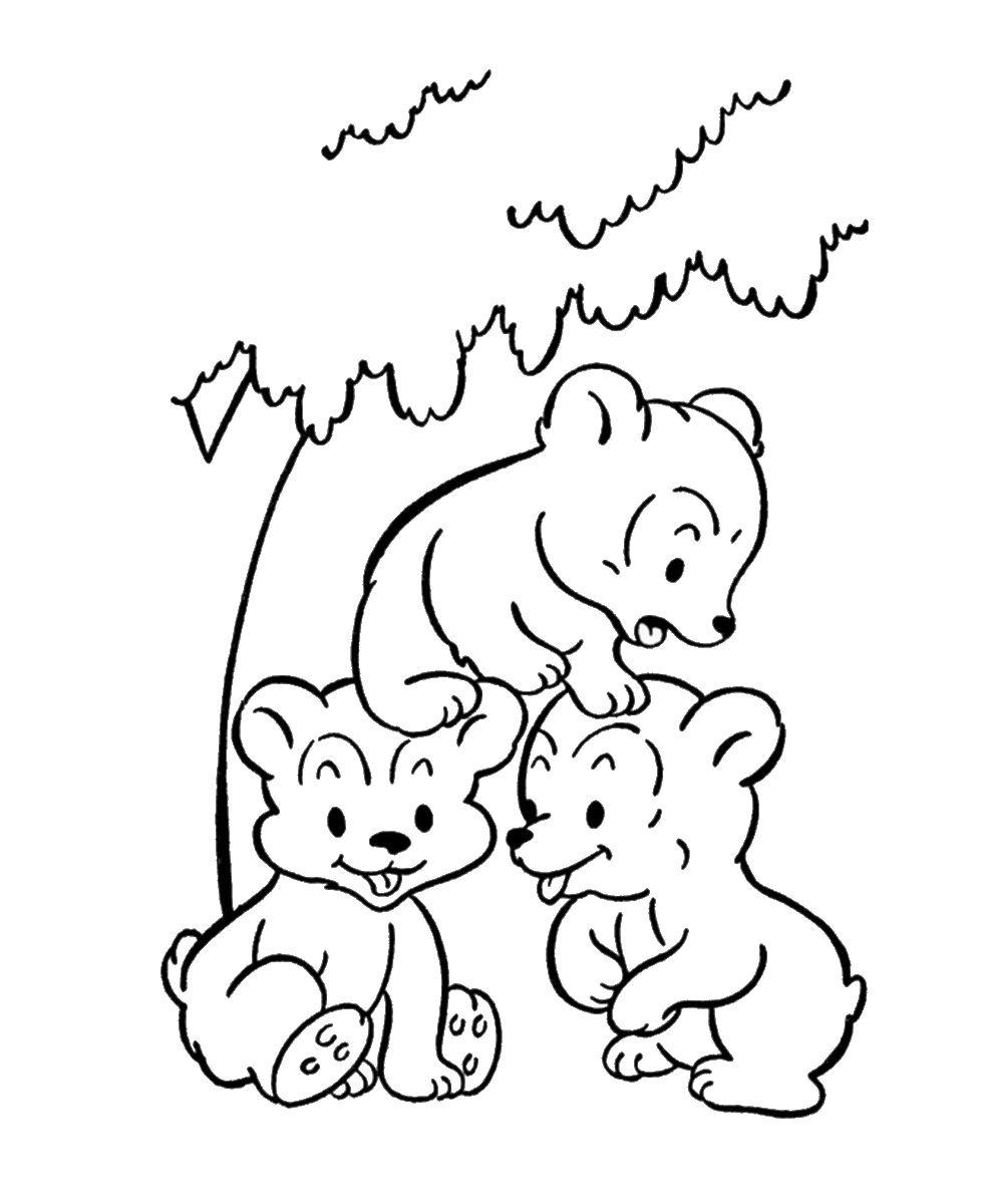 Раскраски диких животных картинки 5