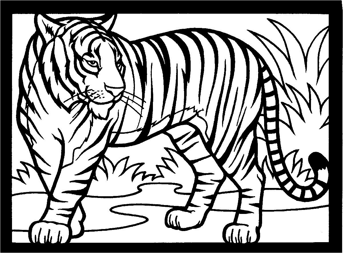 Раскраска тигр с тигренком