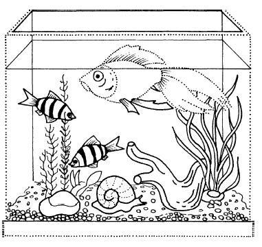 Аквариум для рыбки раскраска