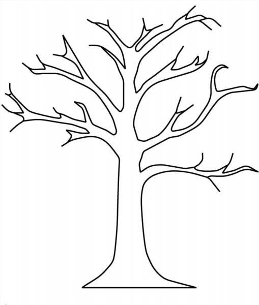 Раскраска листьев деревьев - 5