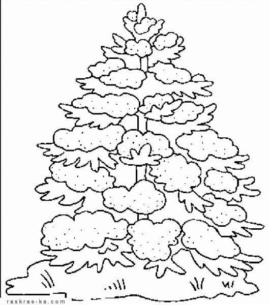 Раскраска дерево зима