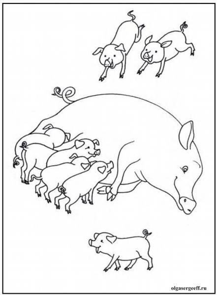 Домашние животные заботятся о своем потомстве рисунки