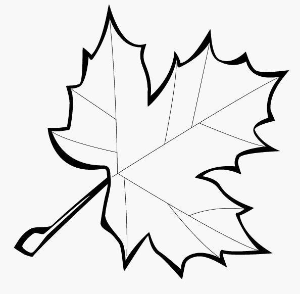 Распечатать раскраску осенних листьев