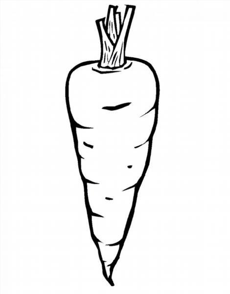 Раскраски для детей морковка
