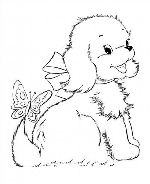"""Раскраски """"собака и щенок"""" скачать и распечатать бесплатно"""