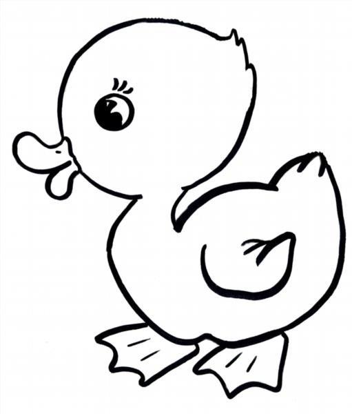 Раскраска утенка для детей