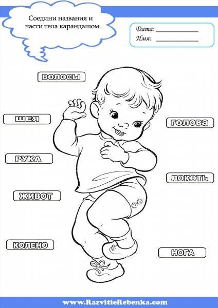 для чего знакомим детей с частями тела