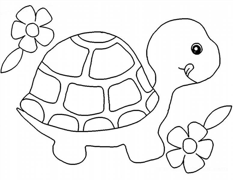 Раскраска черепашка для маленьких