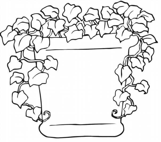 Раскраски растения - 5