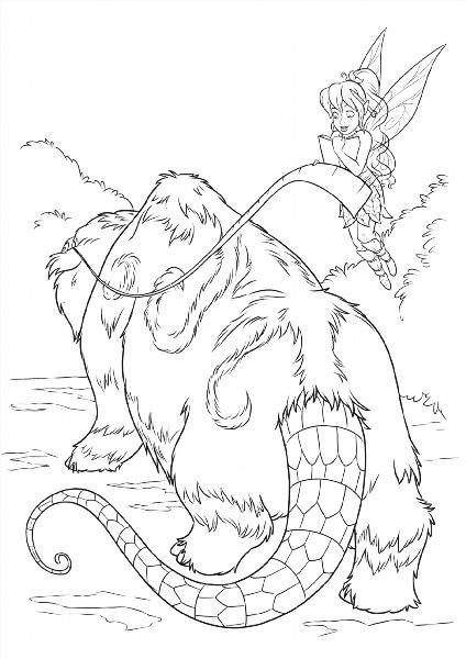 """Раскраски """"феи легенда о чудовище"""" скачать и распечатать ..."""