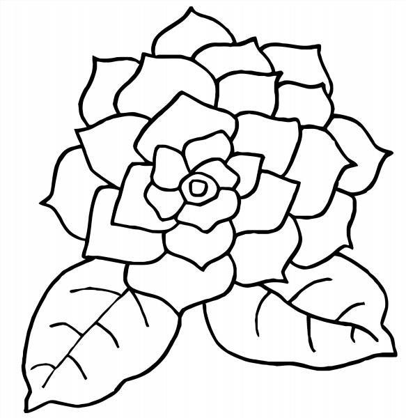 Картинки раскраски большие цветы