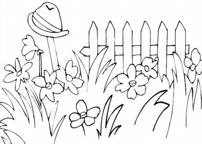 Раскраски для сада - 6