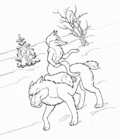 Раскраски волки и лисы