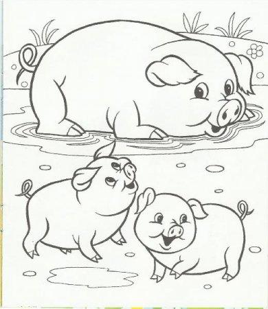 Картинки раскраски детёнышей животных