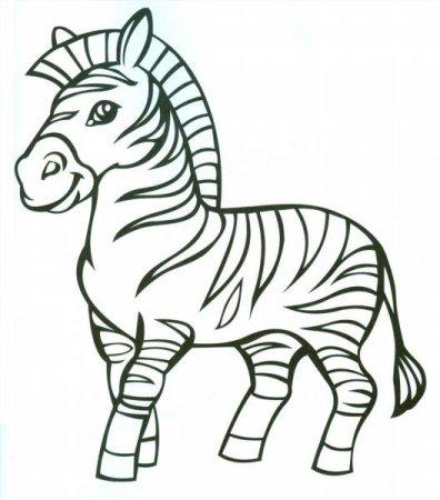 Картинки зебра раскраска