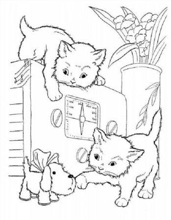 Раскраски котик собачка