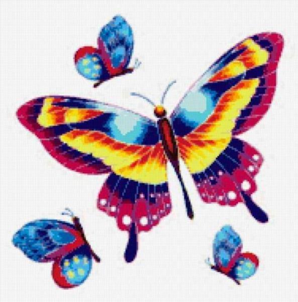 Рисунки бабочек для раскраски
