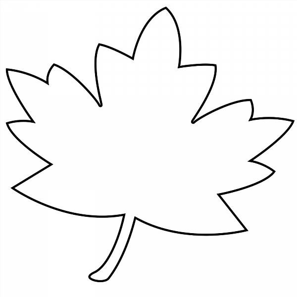 Как сделать трафарет кленового листа