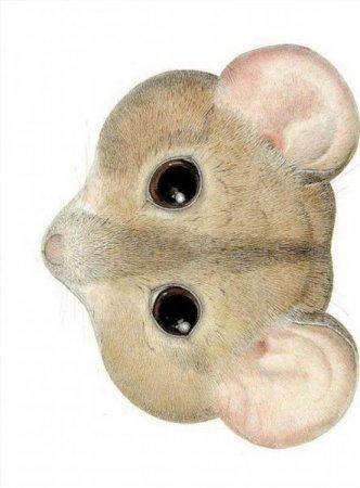 Маска мышки на голову распечатать