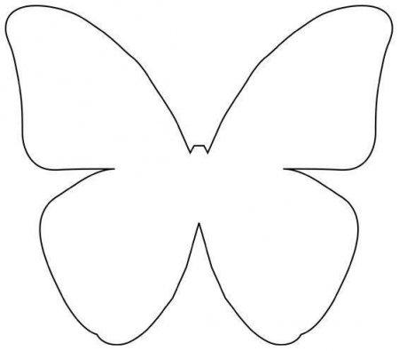 Бабочки на стене своими руками шаблоны распечатать 46